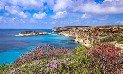 Lampedusa - Visit Pelagie: Lampedusa + Linosa + Lampione