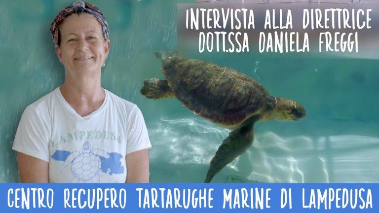 Lampedusa Turtle Rescue: salvaguardia e tutela di una specie ormai a rischio